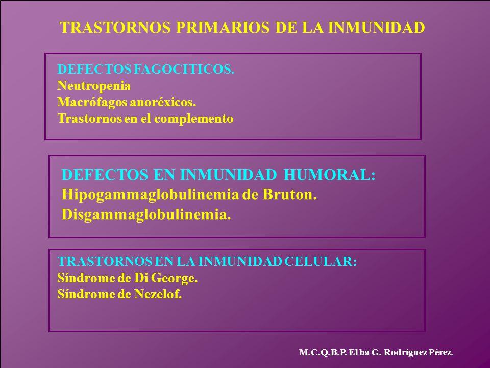 TRASTORNOS PRIMARIOS DE LA INMUNIDAD M.C.Q.B.P. El ba G. Rodríguez Pérez. DEFECTOS FAGOCITICOS. Neutropenia Macrófagos anoréxicos. Trastornos en el co