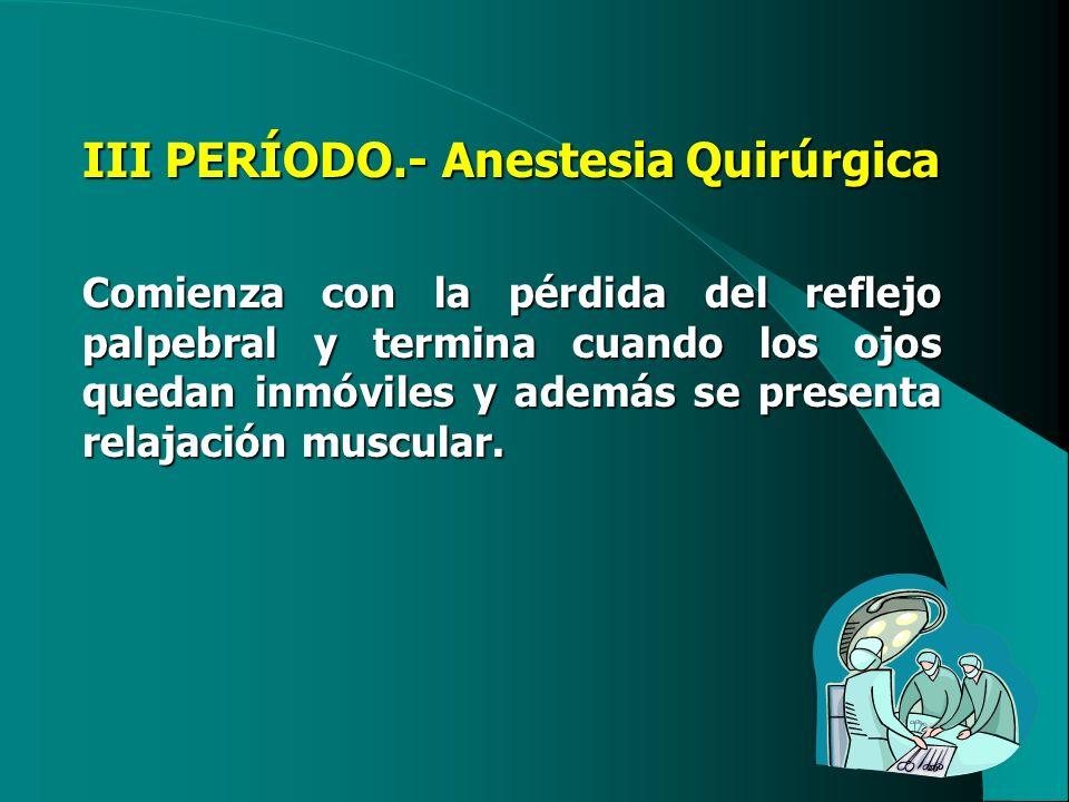 III PERÍODO.- Anestesia Quirúrgica Comienza con la pérdida del reflejo palpebral y termina cuando los ojos quedan inmóviles y además se presenta relaj