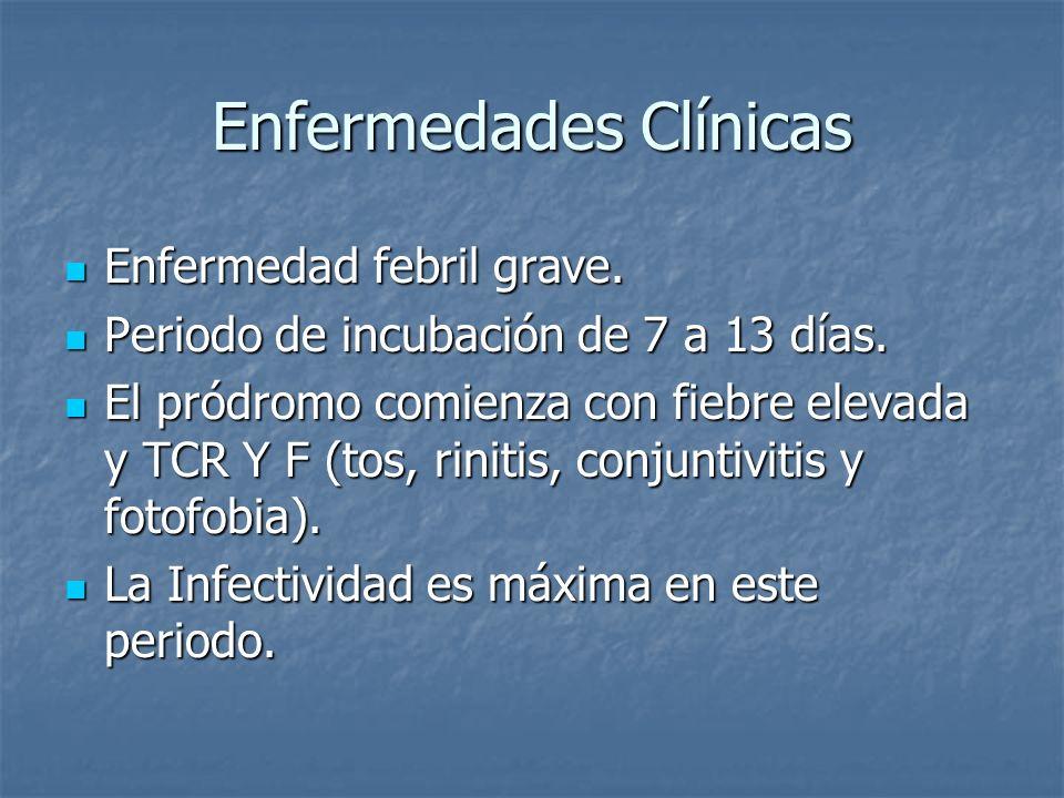 Enfermedades Clínicas Enfermedad febril grave. Enfermedad febril grave. Periodo de incubación de 7 a 13 días. Periodo de incubación de 7 a 13 días. El