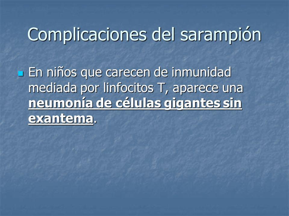 Complicaciones del sarampión En niños que carecen de inmunidad mediada por linfocitos T, aparece una neumonía de células gigantes sin exantema. En niñ