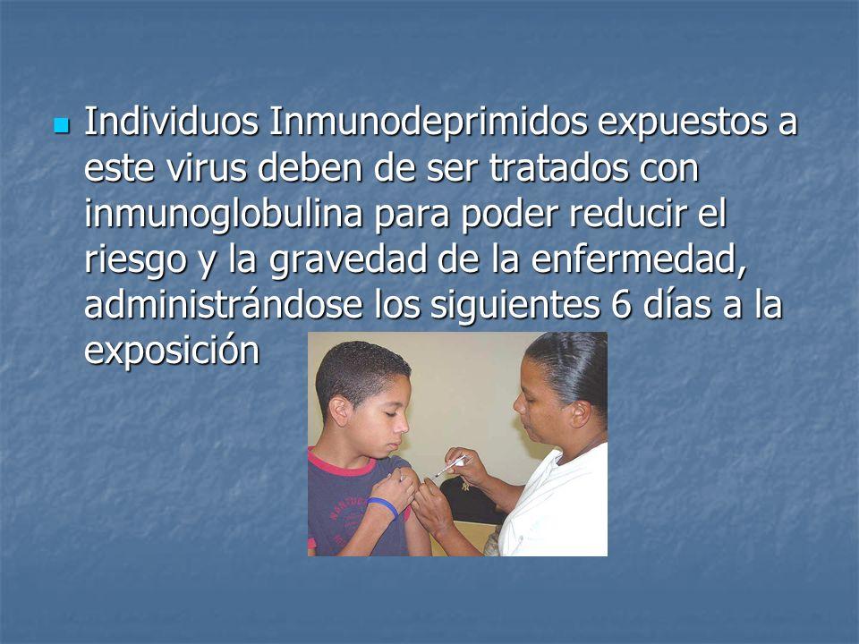 Individuos Inmunodeprimidos expuestos a este virus deben de ser tratados con inmunoglobulina para poder reducir el riesgo y la gravedad de la enfermed
