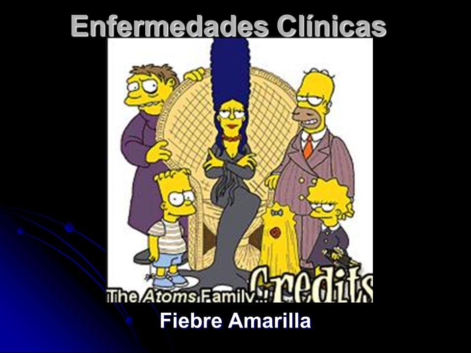 Enfermedades Clínicas Fiebre Amarilla