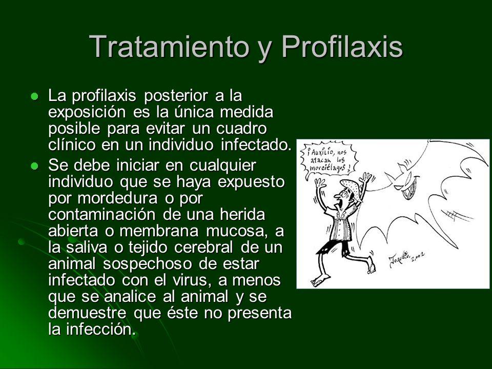 Tratamiento y Profilaxis La profilaxis posterior a la exposición es la única medida posible para evitar un cuadro clínico en un individuo infectado. L