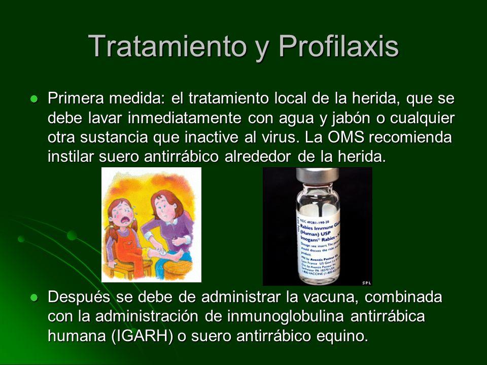 Tratamiento y Profilaxis Primera medida: el tratamiento local de la herida, que se debe lavar inmediatamente con agua y jabón o cualquier otra sustanc