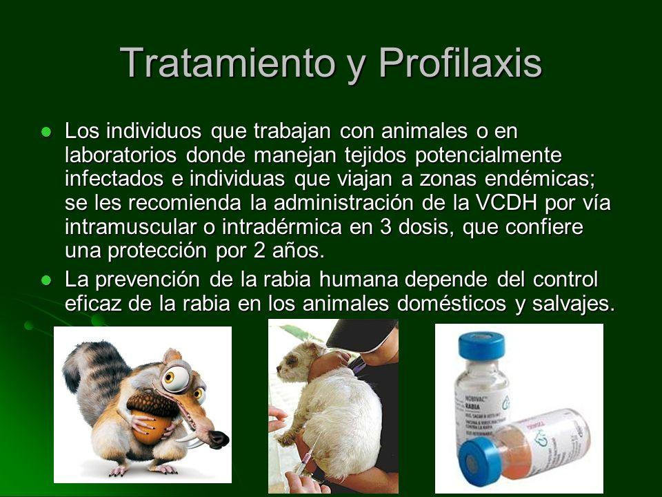 Los individuos que trabajan con animales o en laboratorios donde manejan tejidos potencialmente infectados e individuas que viajan a zonas endémicas;