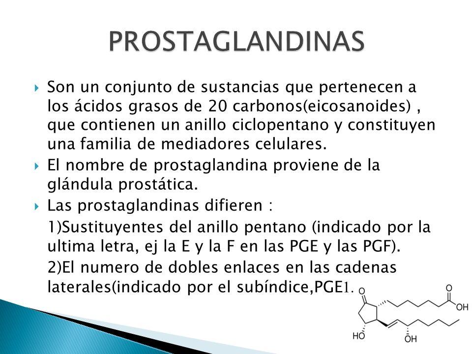 Son un conjunto de sustancias que pertenecen a los ácidos grasos de 20 carbonos(eicosanoides), que contienen un anillo ciclopentano y constituyen una