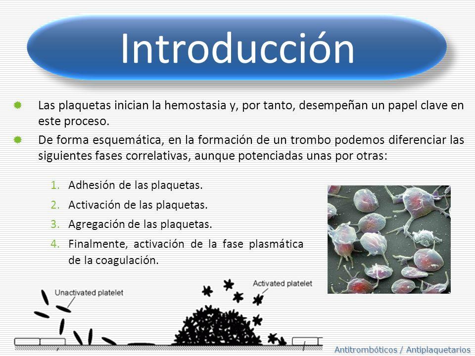 Antitrombóticos / Antiplaquetarios Las plaquetas inician la hemostasia y, por tanto, desempeñan un papel clave en este proceso. De forma esquemática,