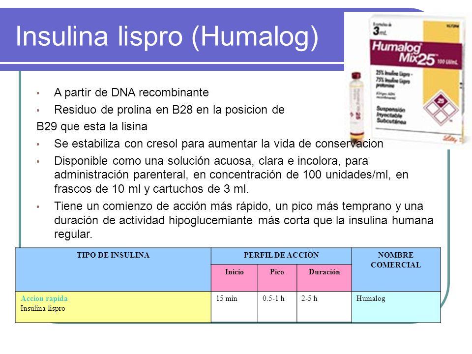 Insulina lispro (Humalog) A partir de DNA recombinante Residuo de prolina en B28 en la posicion de B29 que esta la lisina Se estabiliza con cresol par