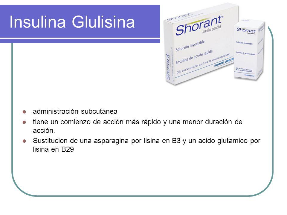 Insulina Glulisina administración subcutánea tiene un comienzo de acción más rápido y una menor duración de acción. Sustitucion de una asparagina por