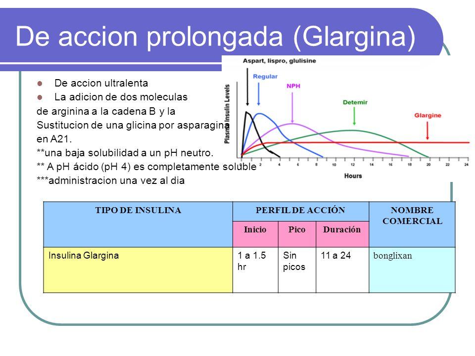 De accion prolongada (Glargina) De accion ultralenta La adicion de dos moleculas de arginina a la cadena B y la Sustitucion de una glicina por asparag
