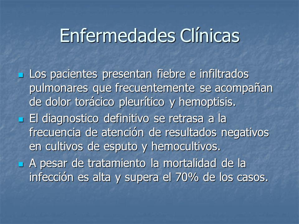 Enfermedades Clínicas Los pacientes presentan fiebre e infiltrados pulmonares que frecuentemente se acompañan de dolor torácico pleurítico y hemoptisi