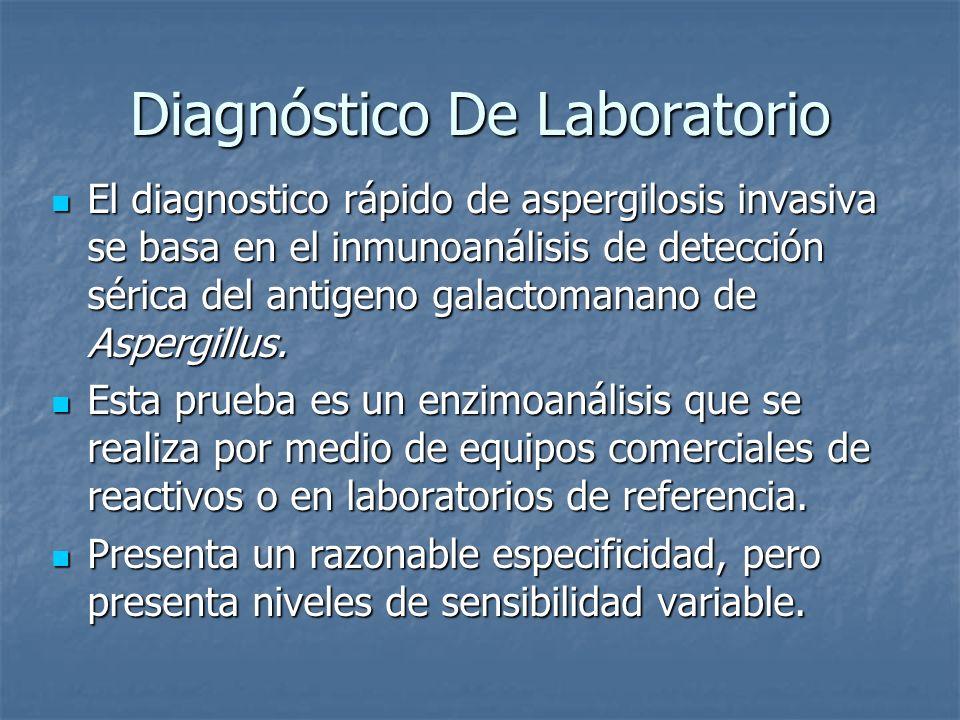 Diagnóstico De Laboratorio El diagnostico rápido de aspergilosis invasiva se basa en el inmunoanálisis de detección sérica del antigeno galactomanano