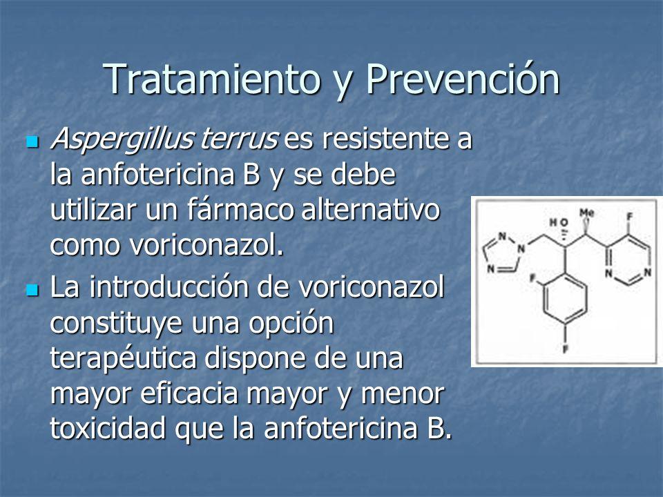 Tratamiento y Prevención Aspergillus terrus es resistente a la anfotericina B y se debe utilizar un fármaco alternativo como voriconazol. Aspergillus