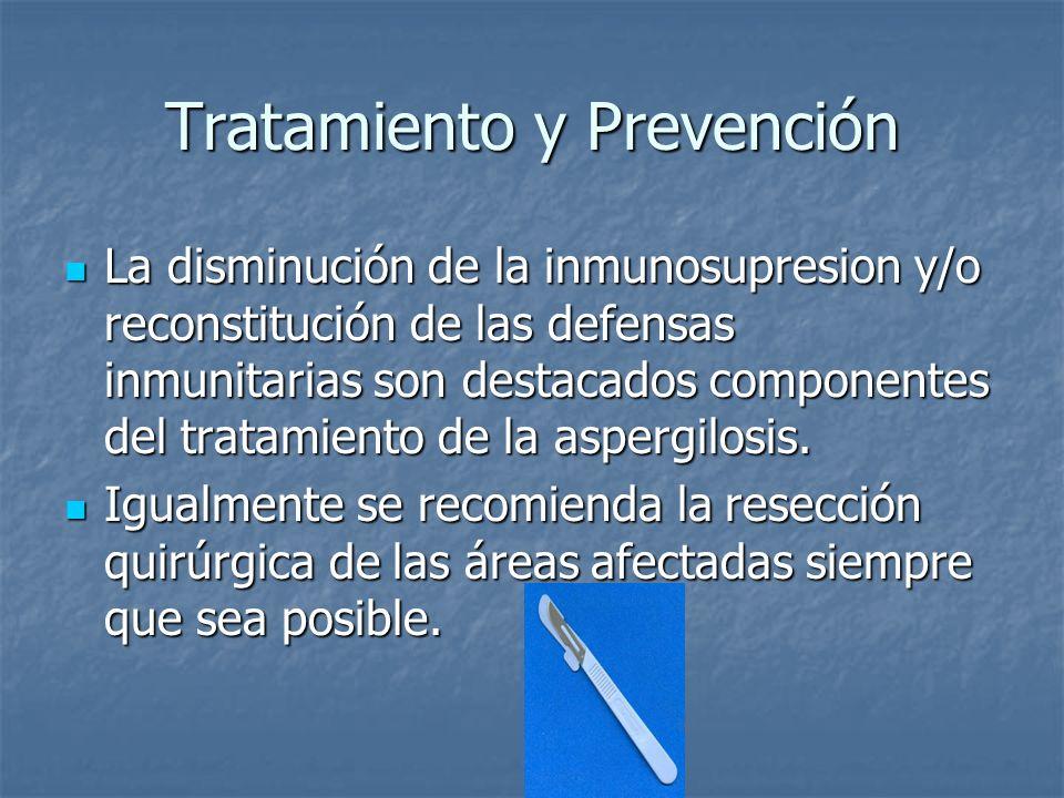 Tratamiento y Prevención La disminución de la inmunosupresion y/o reconstitución de las defensas inmunitarias son destacados componentes del tratamien