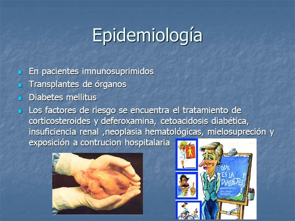 Epidemiología En pacientes imnunosuprimidos En pacientes imnunosuprimidos Transplantes de órganos Transplantes de órganos Diabetes mellitus Diabetes m