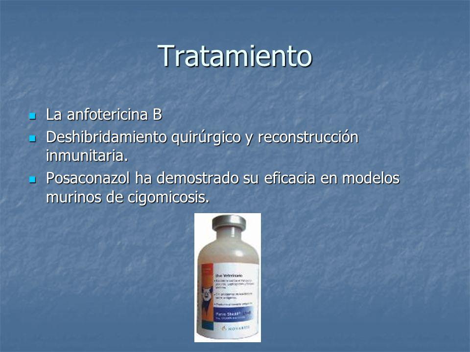 Tratamiento La anfotericina B La anfotericina B Deshibridamiento quirúrgico y reconstrucción inmunitaria. Deshibridamiento quirúrgico y reconstrucción