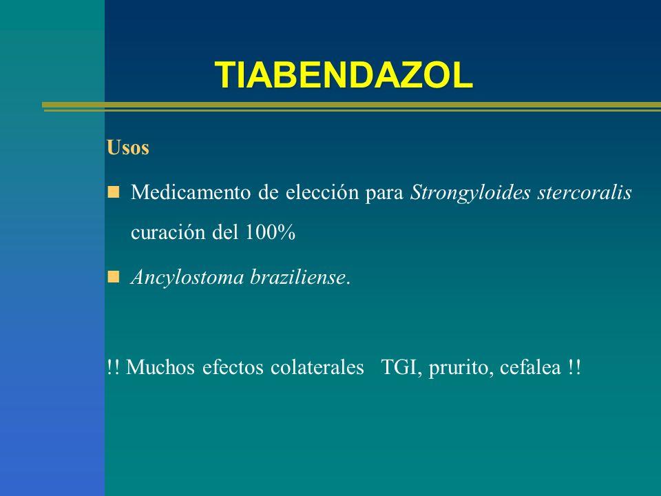 TIABENDAZOL Usos Medicamento de elección para Strongyloides stercoralis curación del 100% Ancylostoma braziliense. !! Muchos efectos colaterales TGI,