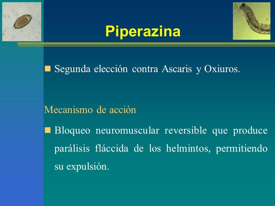 Piperazina Segunda elección contra Ascaris y Oxiuros. Mecanismo de acción Bloqueo neuromuscular reversible que produce parálisis fláccida de los helmi