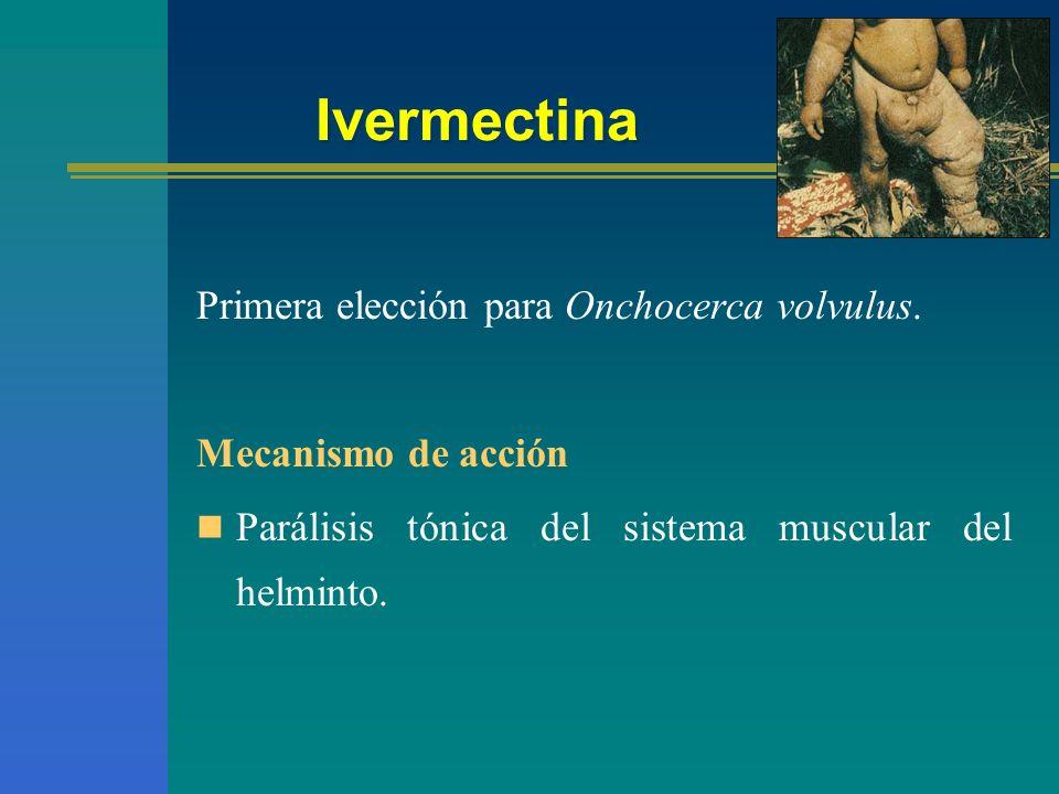 Ivermectina Primera elección para Onchocerca volvulus. Mecanismo de acción Parálisis tónica del sistema muscular del helminto.