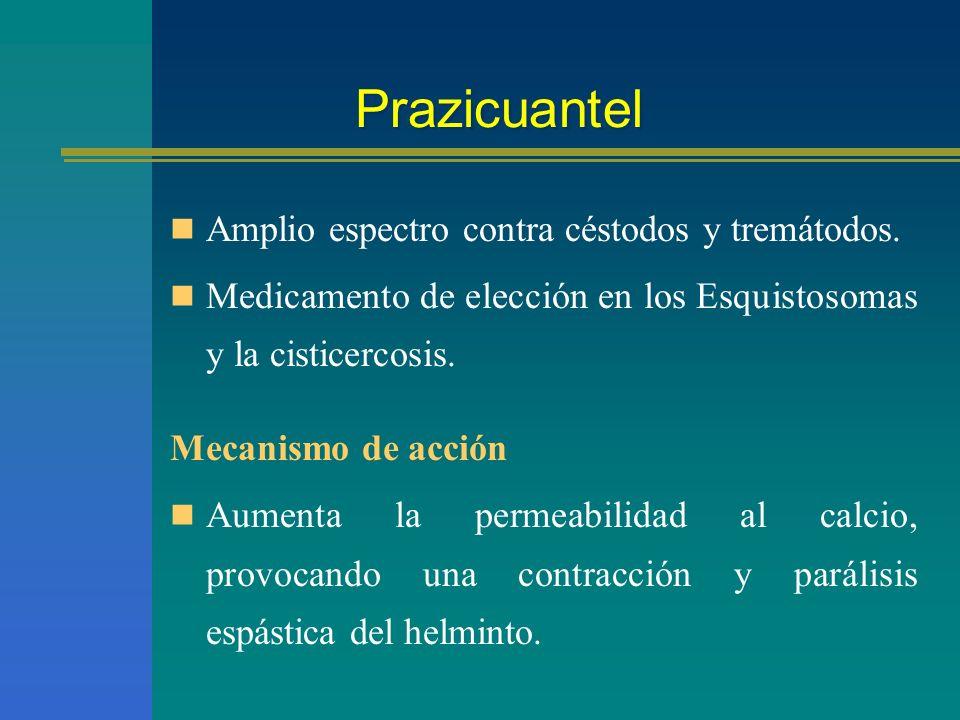 Prazicuantel Amplio espectro contra céstodos y tremátodos. Medicamento de elección en los Esquistosomas y la cisticercosis. Mecanismo de acción Aument