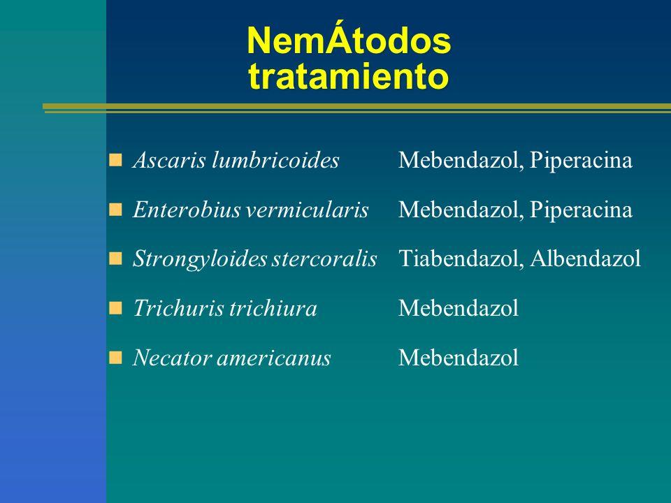 mebendazol Esquema de tratamiento Oxiurasis 100 mg dosis única en AM Uncinariasis Ascariasis 100 mg 2 x 3 Tricuriasis Triquinosis 200 a 400 mg 3 x 3