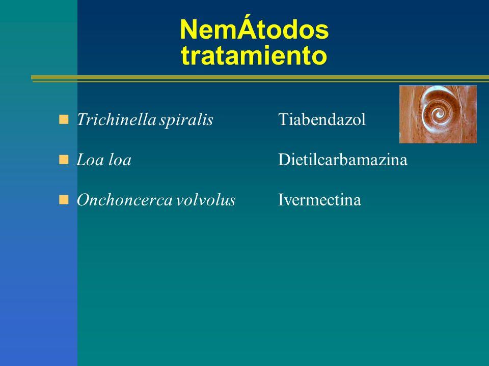 NemÁtodos tratamiento Trichinella spiralis Loa loa Onchoncerca volvolus Tiabendazol Dietilcarbamazina Ivermectina
