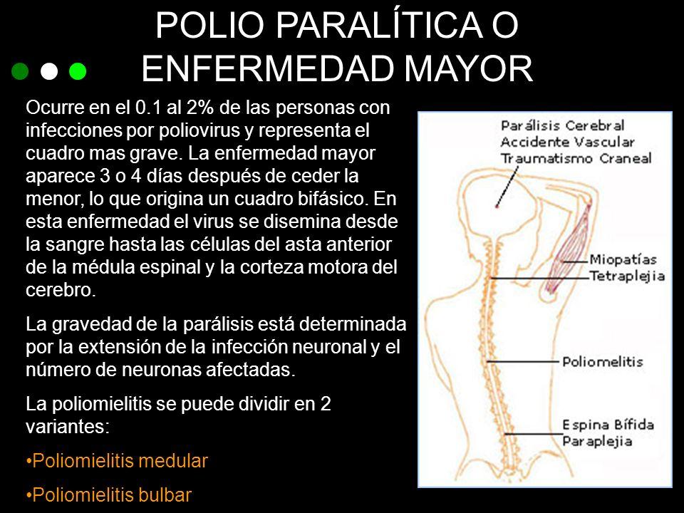 POLIO PARALÍTICA O ENFERMEDAD MAYOR Ocurre en el 0.1 al 2% de las personas con infecciones por poliovirus y representa el cuadro mas grave. La enferme