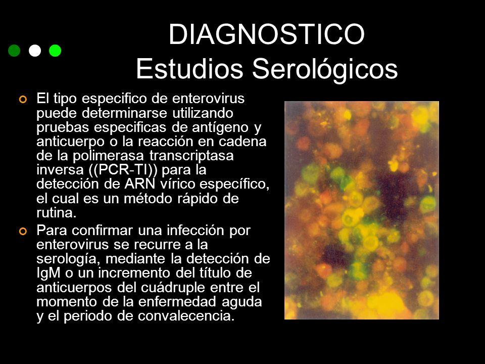 DIAGNOSTICO Estudios Serológicos El tipo especifico de enterovirus puede determinarse utilizando pruebas especificas de antígeno y anticuerpo o la rea