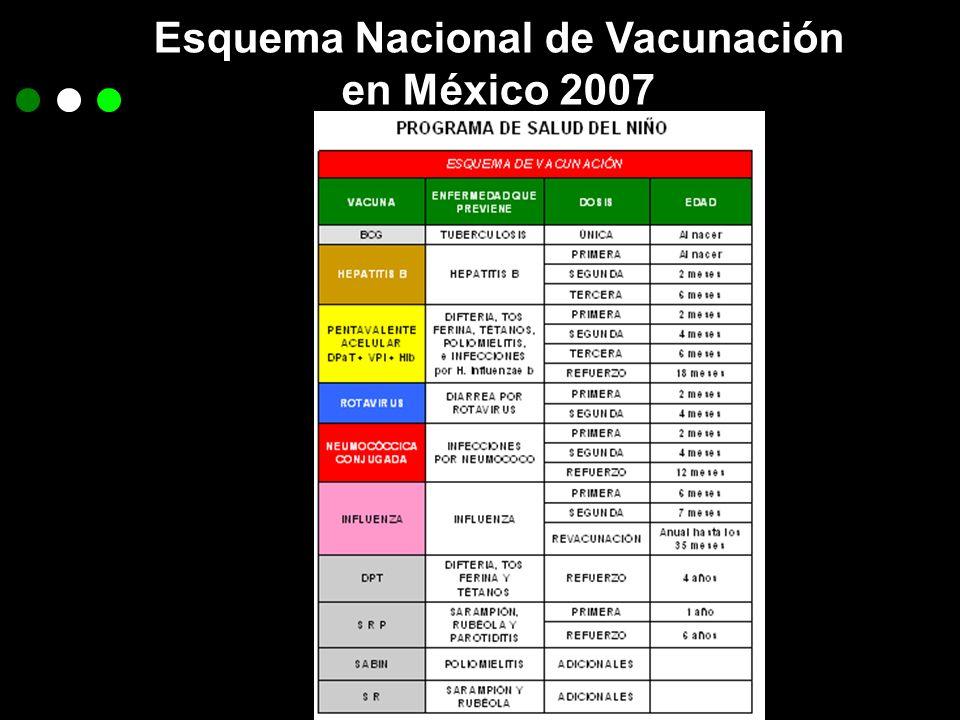 Esquema Nacional de Vacunación en México 2007