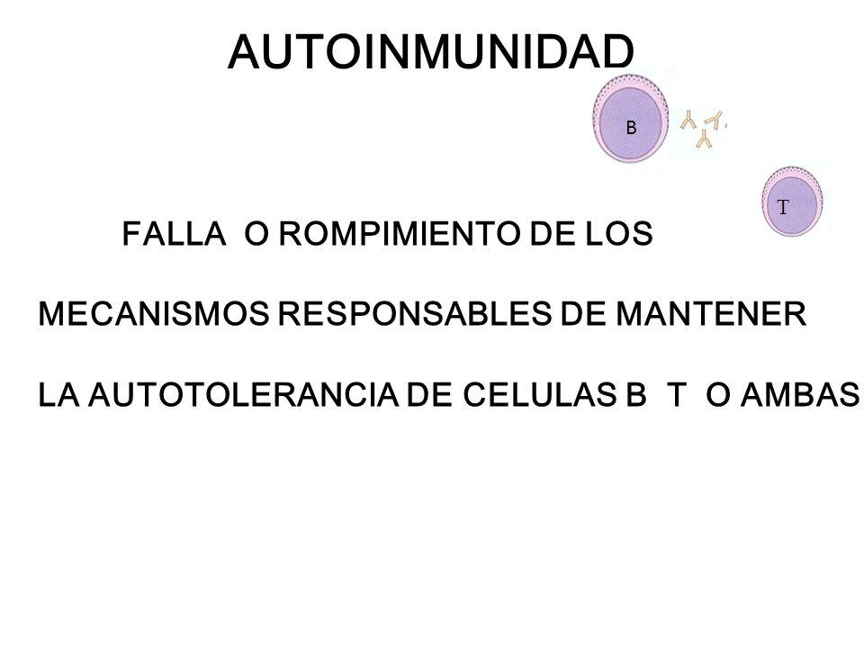 Respuesta anti-tumoral: