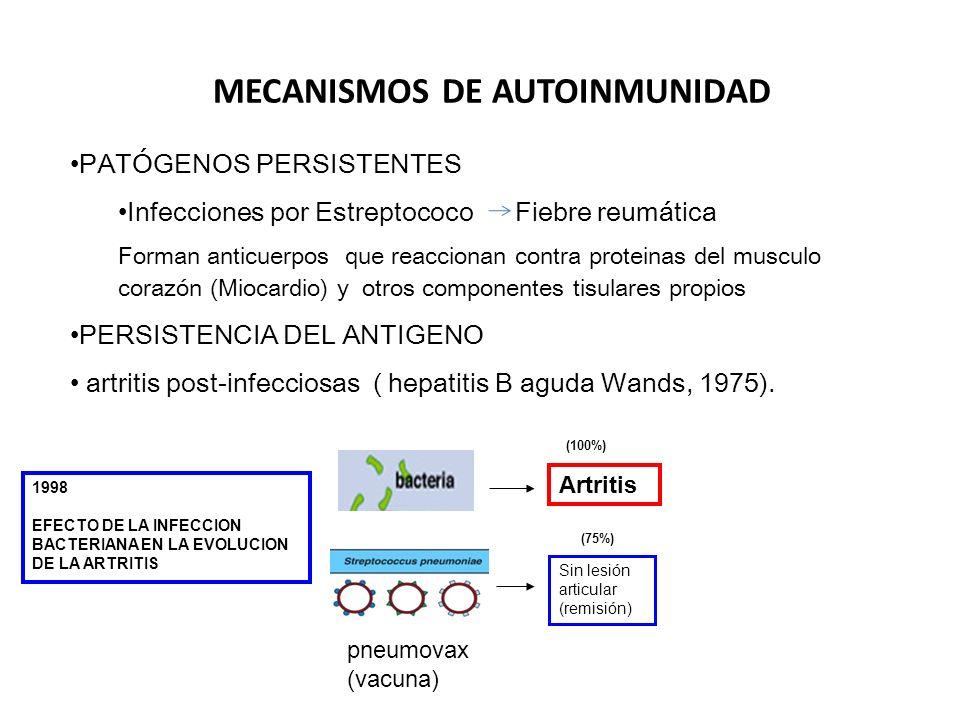 ENFERMEDADES AUTOINMUNES Y DIAGNOSTICO POR EL LABORATORIO Células LE 1948 ANA difuso DNA nativoANA periférico DNA histonas Lupus activo ANA moteado RNPANA nucleolar RNAANA (Crithidia DNA ds Actividad de LE.