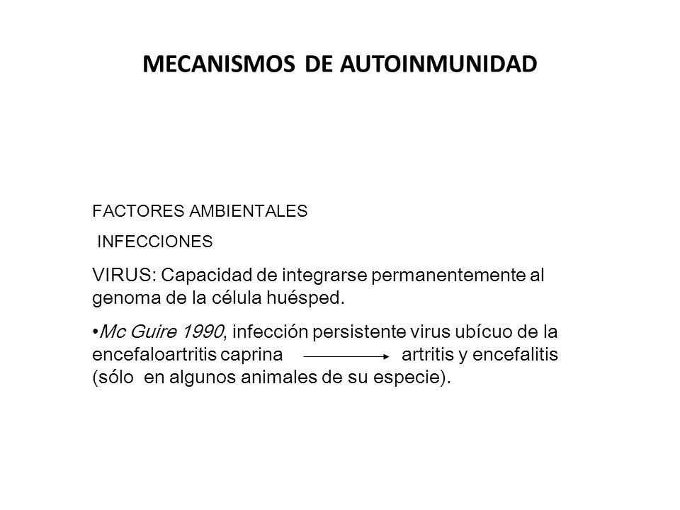 ALTERACIONES ANATOMICAS DE LOS TEJIDOS Inflamación infección, exposición de Ags Autoinmunidad traumatismo ocultos daño isquémico INFLUENCIAS HORMONALES LES 10 mujeres: 1 hombre AR 3 mujeres :1 hombre