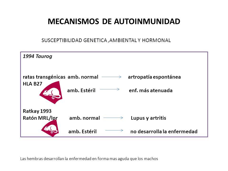 ENFERMEDADES AUTOINMUNES Y DIAGNOSTICO POR EL LABORATORIO TIROIDITIS DE HASHIMOTO Acs anti-tiroglobulina = hipotiroidismo Método :Reacción de aglutinación RIA ELISA