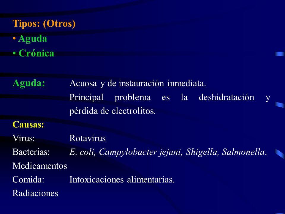 Tipos: (Otros) Aguda Crónica Aguda: Acuosa y de instauración inmediata. Principal problema es la deshidratación y pérdida de electrolitos. Causas: Vir