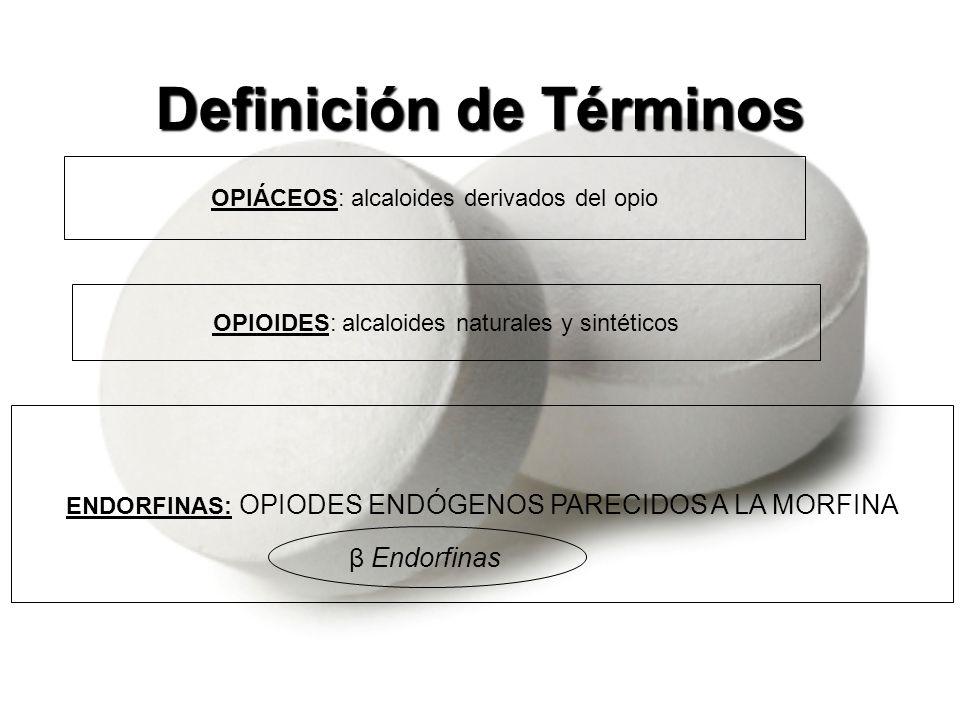 Naturales –Morfina –Codeína Sintéticos –Metadona –Nalbufina –Meperidina –Tramadol –Dextrometorfano Opiodes Alcaloides naturales y sintéticos Papaver somniferum