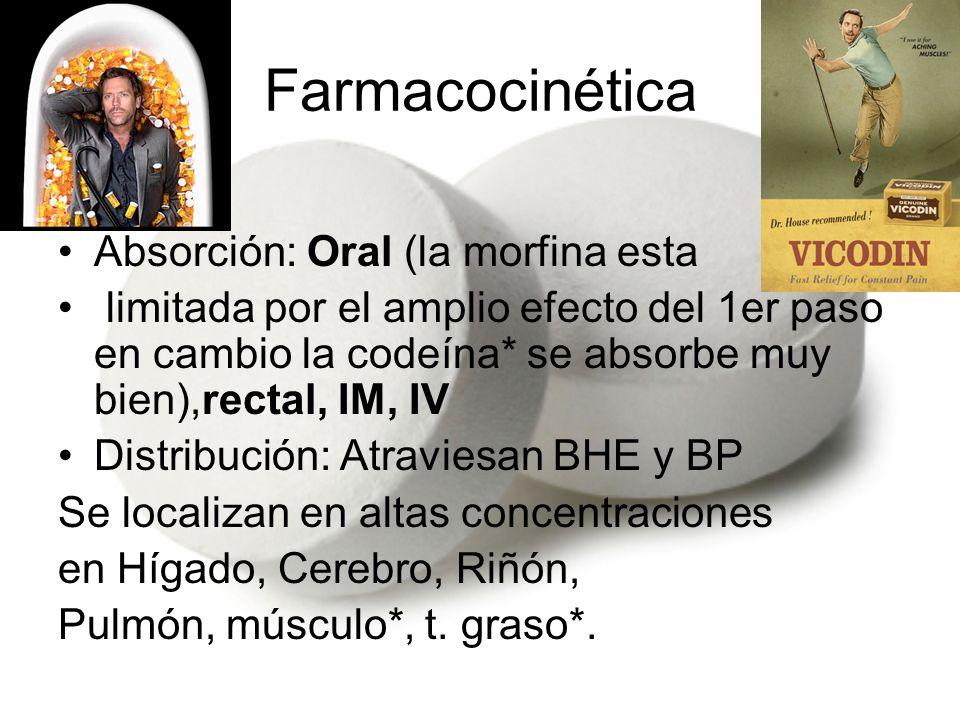 Farmacocinética Metabolismo: Hepático (glucoronidación) Morfina M3G-Neuroexcitador*->Convulsiones 10%M6G-Analgésico potente* Ésteres (Heroína)->se hidrolizan a->morfina Codeína-------------------------------------------- Un metabolito desmetilado de la Meperidina (Normeperidina-> Convulsiones) Excreción: Renal