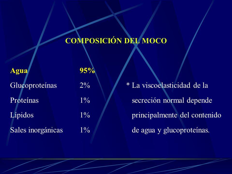 COMPOSICIÓN DEL MOCO Agua95% Glucoproteínas2%* La viscoelasticidad de la Proteínas1% secreción normal depende Lípidos1% principalmente del contenido S