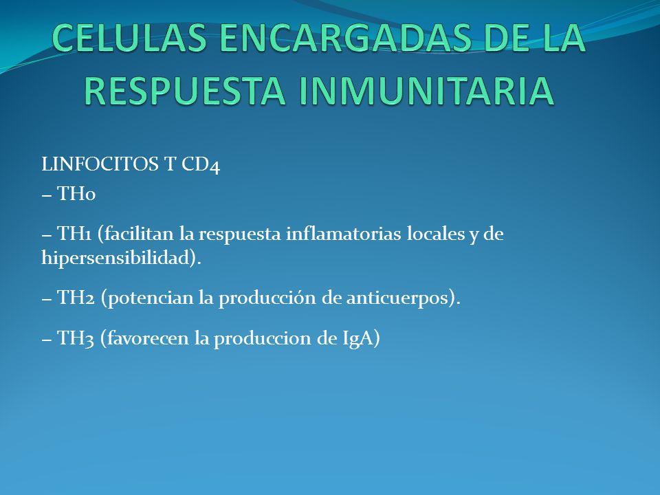 LINFOCITOS T CD4 TH0 TH1 (facilitan la respuesta inflamatorias locales y de hipersensibilidad). TH2 (potencian la producción de anticuerpos). TH3 (fav