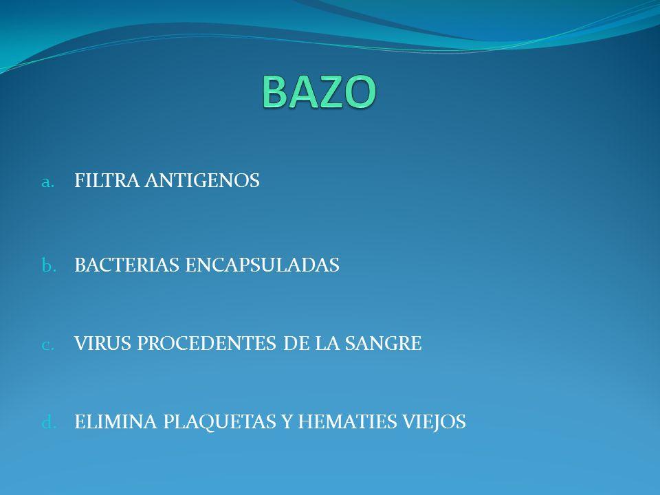 a. FILTRA ANTIGENOS b. BACTERIAS ENCAPSULADAS c. VIRUS PROCEDENTES DE LA SANGRE d. ELIMINA PLAQUETAS Y HEMATIES VIEJOS