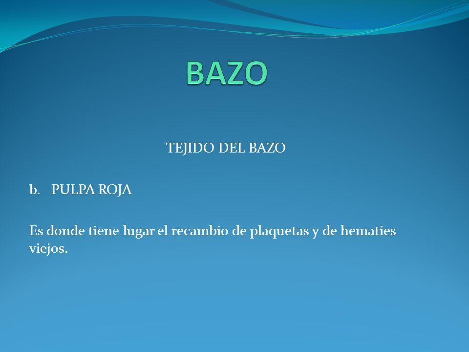 BASOFILOS CARECEN DE PROPIEDADES FAGOCITICAS.