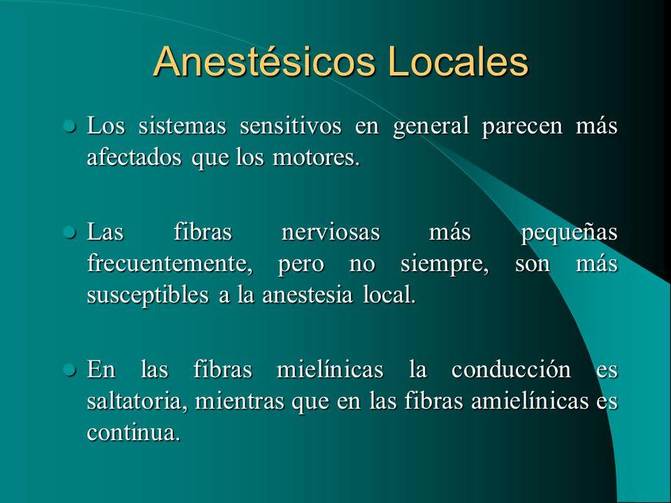 Anestésicos Locales Los sistemas sensitivos en general parecen más afectados que los motores. Los sistemas sensitivos en general parecen más afectados