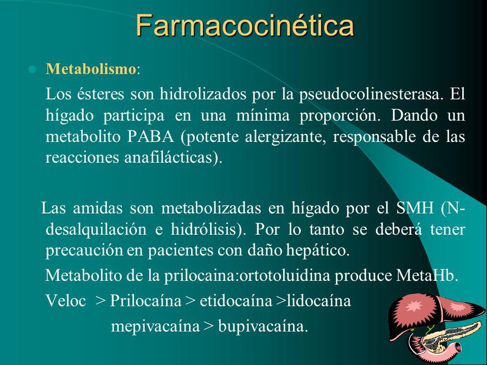 Farmacocinética Metabolismo: Los ésteres son hidrolizados por la pseudocolinesterasa. El hígado participa en una mínima proporción. Dando un metabolit