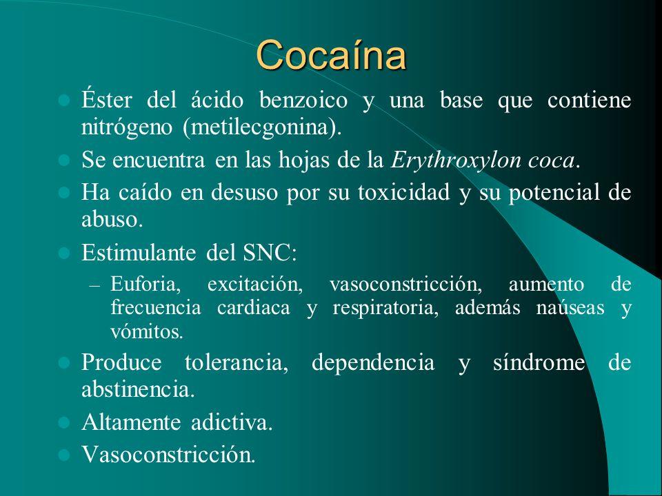 Cocaína Éster del ácido benzoico y una base que contiene nitrógeno (metilecgonina). Se encuentra en las hojas de la Erythroxylon coca. Ha caído en des