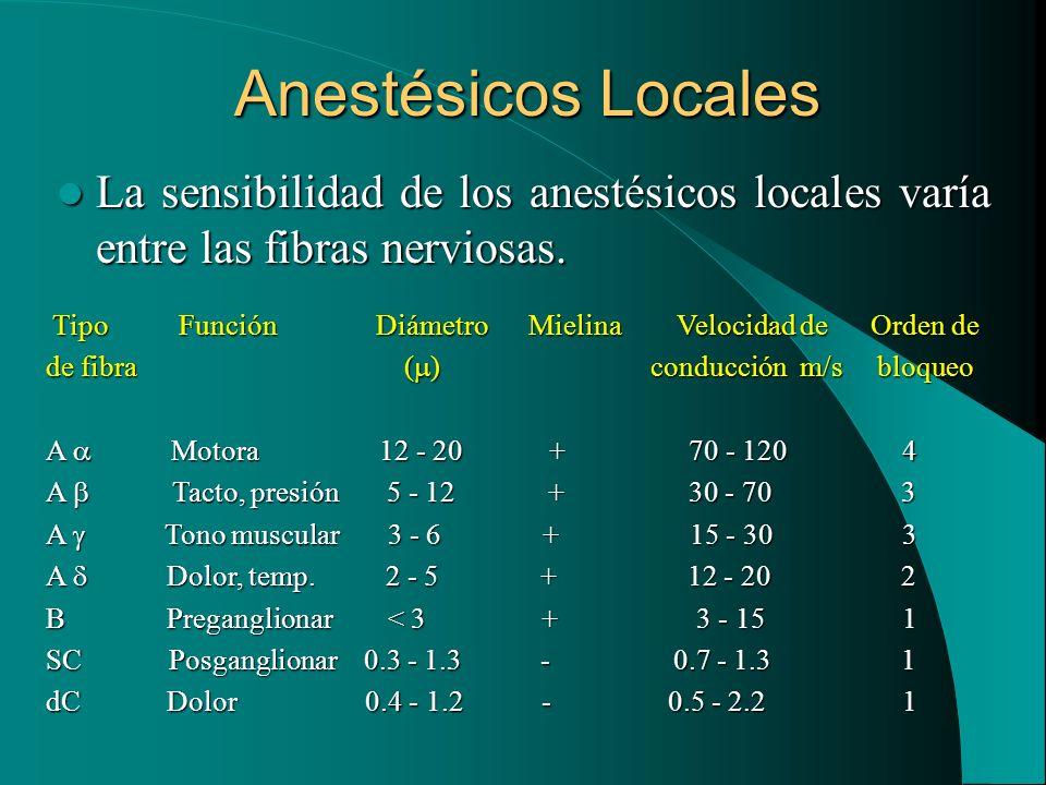 Anestésicos Locales La sensibilidad de los anestésicos locales varía entre las fibras nerviosas. La sensibilidad de los anestésicos locales varía entr