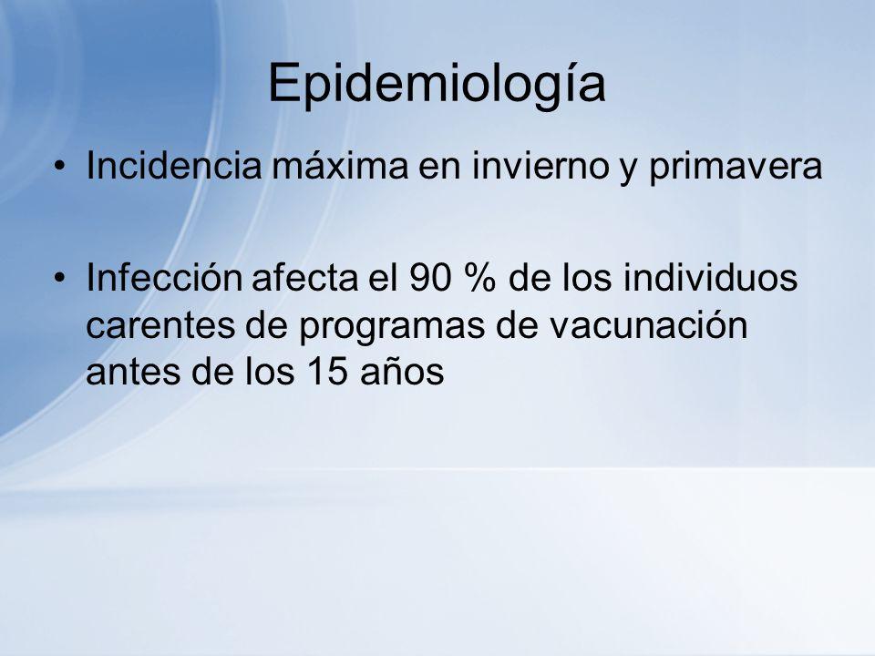 Epidemiología Incidencia máxima en invierno y primavera Infección afecta el 90 % de los individuos carentes de programas de vacunación antes de los 15