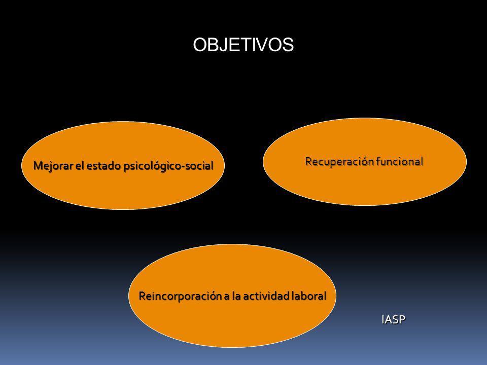 OBJETIVOS Mejorar el estado psicológico-social Recuperación funcional Reincorporación a la actividad laboral IASP