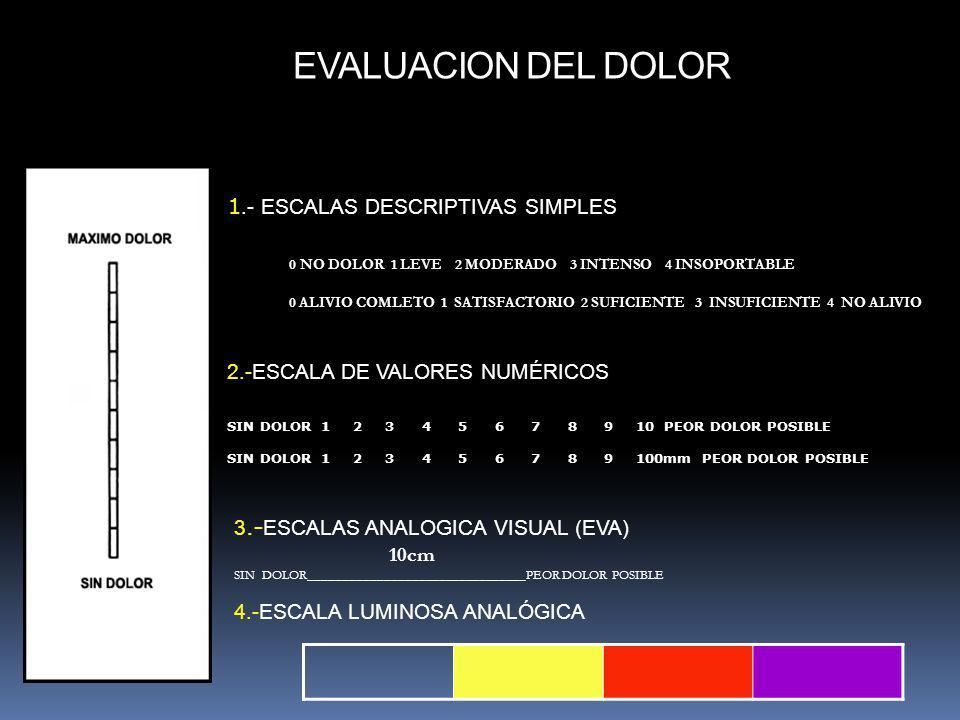 2.-ESCALA DE VALORES NUMÉRICOS SIN DOLOR 1 2 3 4 5 6 7 8 9 10 PEOR DOLOR POSIBLE SIN DOLOR 1 2 3 4 5 6 7 8 9 100mm PEOR DOLOR POSIBLE 3.- ESCALAS ANAL