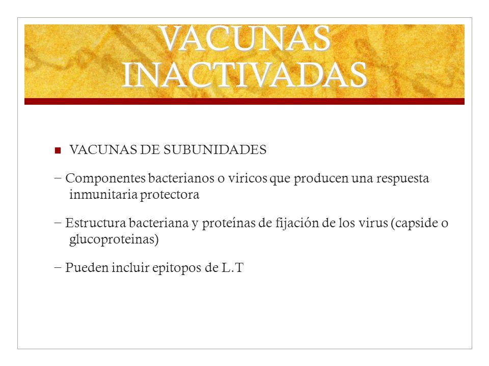 VACUNAS INACTIVADAS VACUNAS DE SUBUNIDADES Componentes bacterianos o viricos que producen una respuesta inmunitaria protectora Estructura bacteriana y