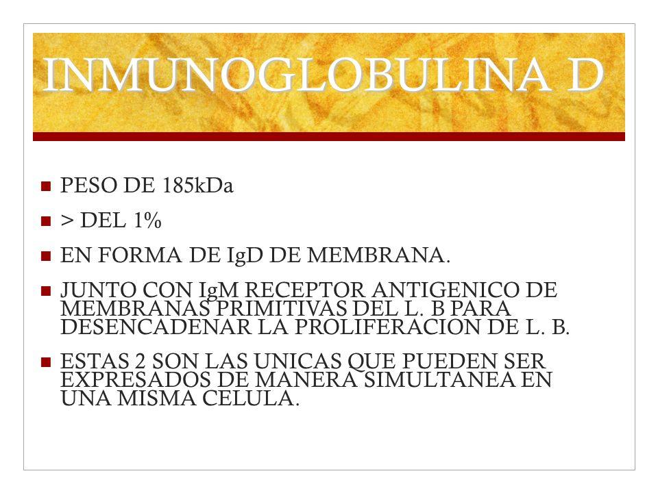 INMUNOGLOBULINA D PESO DE 185kDa > DEL 1% EN FORMA DE IgD DE MEMBRANA. JUNTO CON IgM RECEPTOR ANTIGENICO DE MEMBRANAS PRIMITIVAS DEL L. B PARA DESENCA