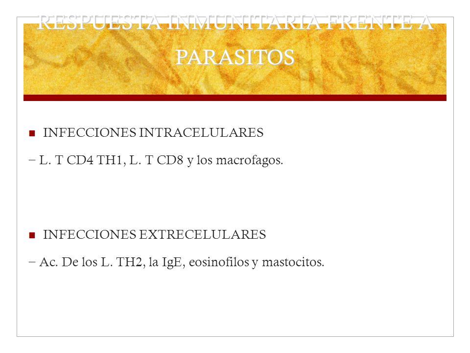 RESPUESTA INMUNITARIA FRENTE A PARASITOS INFECCIONES INTRACELULARES L. T CD4 TH1, L. T CD8 y los macrofagos. INFECCIONES EXTRECELULARES Ac. De los L.
